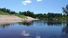 Koiva jõe (Gauja) ülemjooks
